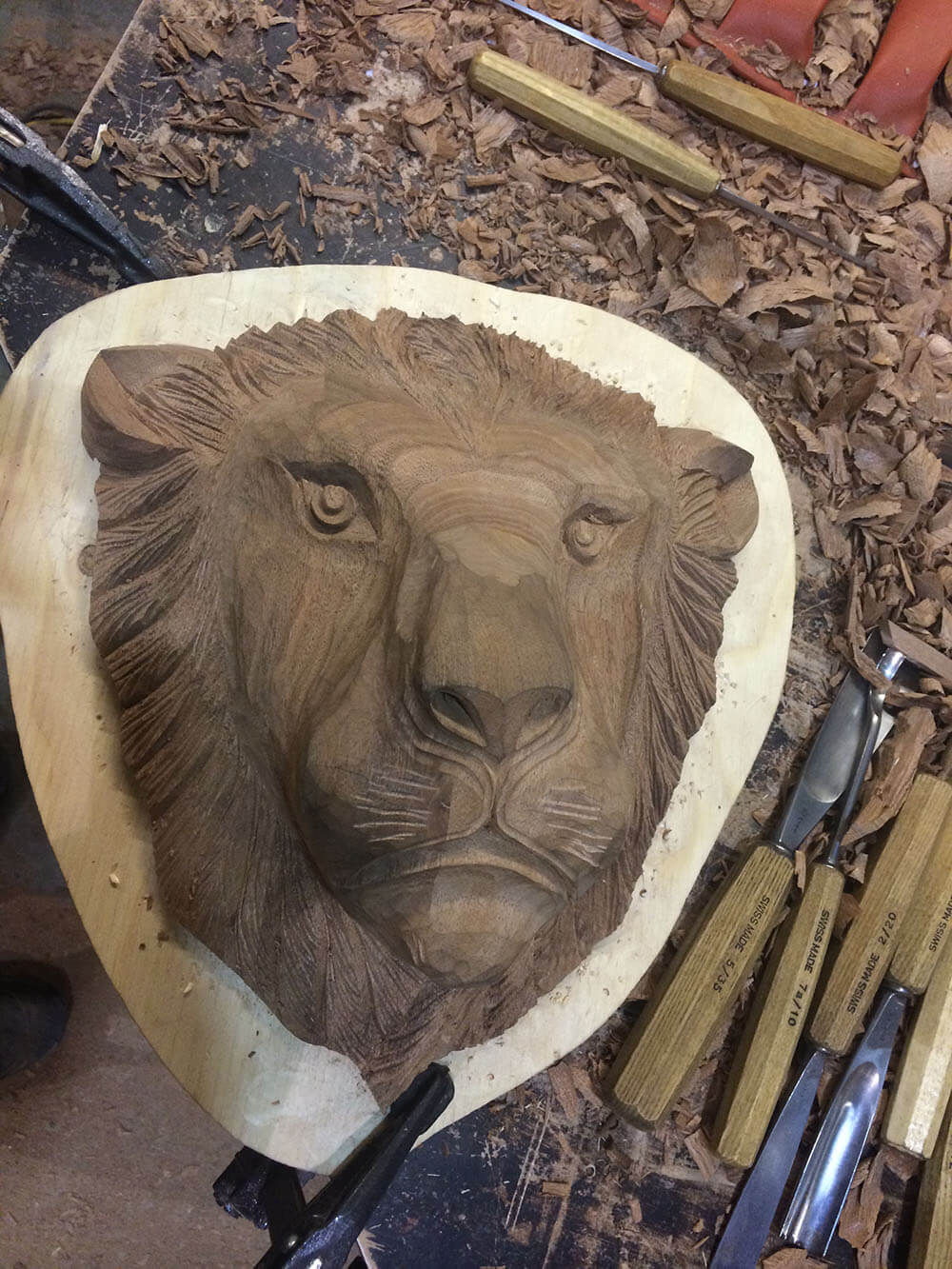Lion head (1)